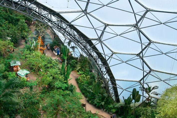 Eden Project. Image: Getty