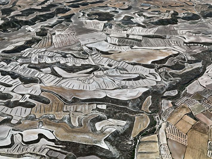 Dryland Farming #13. Monegros County, Aragon, Spain