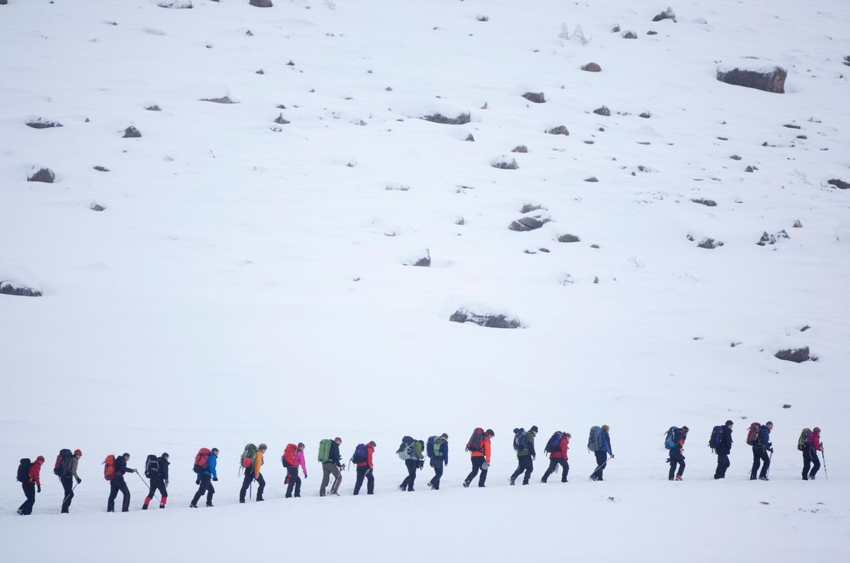 A train of walkers make their way into the Northern Corries, beneath Cairn Gorm. The area's ...