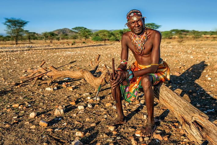 If elephants damage crops, people are tempted to retaliate but a chain of hives will protect ...