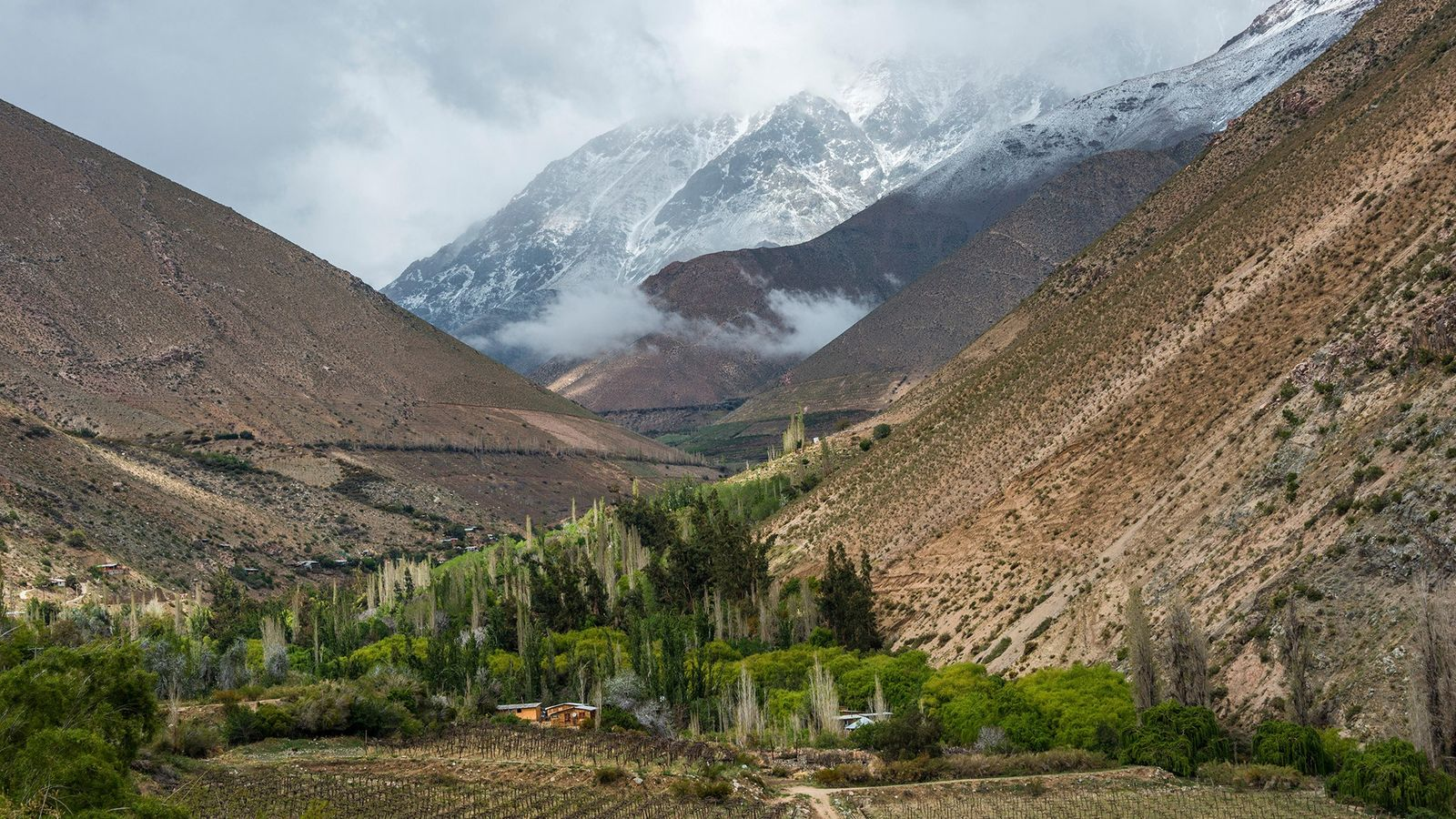 A couple of hours outside of Santiago, Chile's Elqui Valley is renowned for its pisco production—and ...