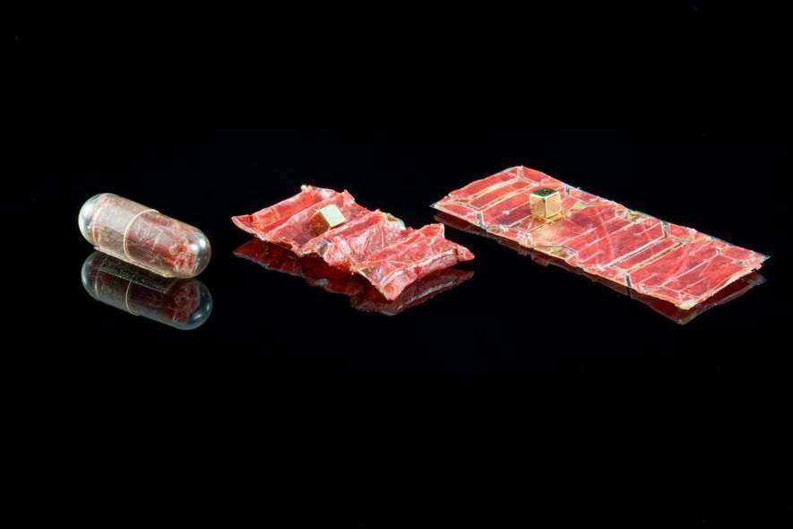 A new wrinkle in origami robots is rectangular, packs a tiny magnet, and folds accordion-style to fit in a pill-size case perfect for swallowing. Now in testing, the robot unfurls in the gut to grab and remove an ingested button battery or patch tissue harmed by its presence. Lori Cuthbert