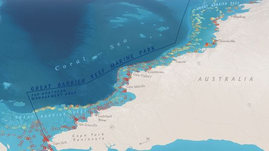 Half of the Great Barrier Reef Is Dead