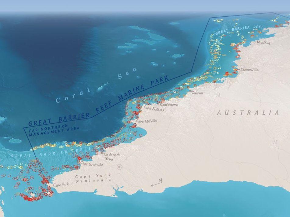 Half of the Great Barrier Reef Is Dead