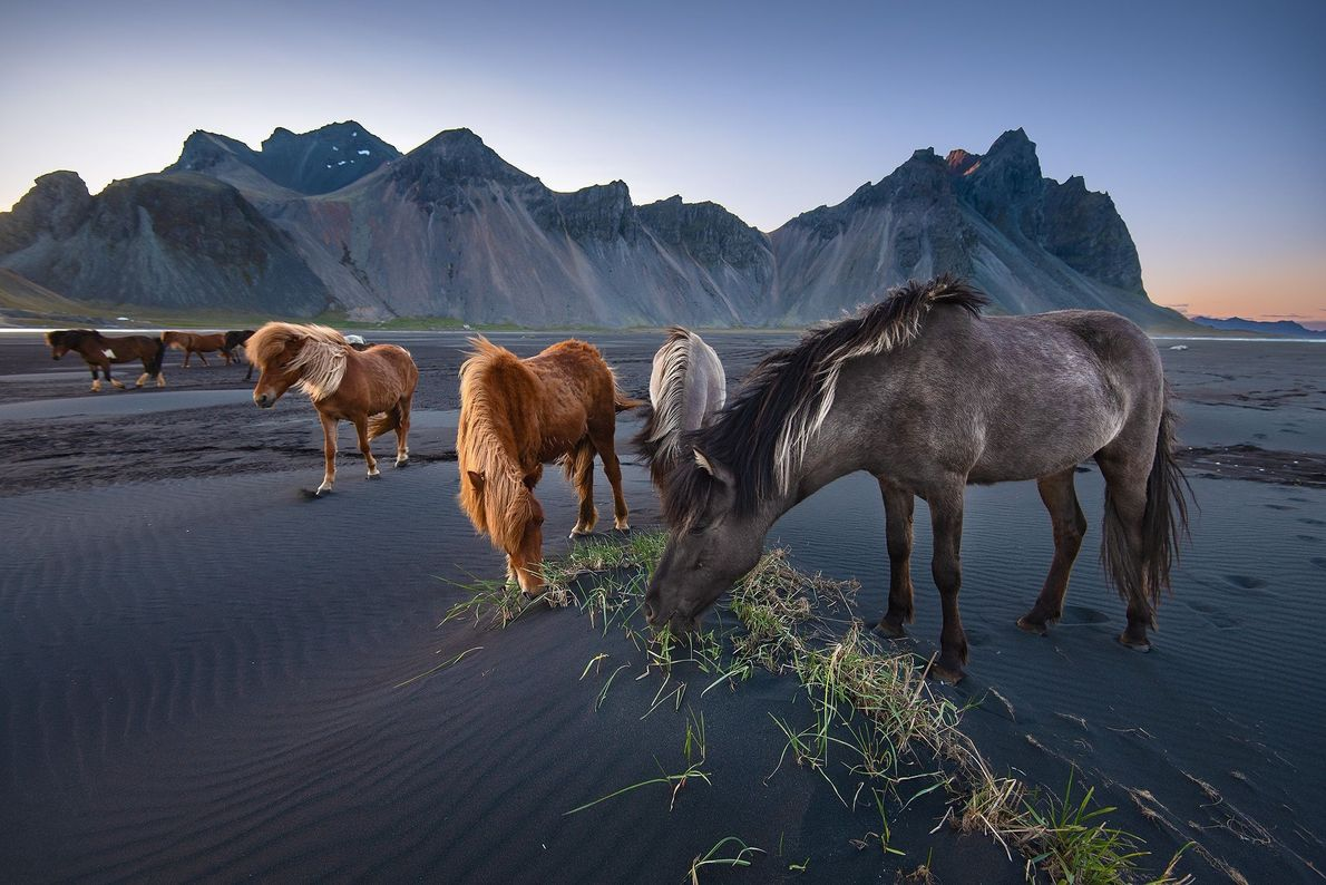 Photo of the Day | National Geographic