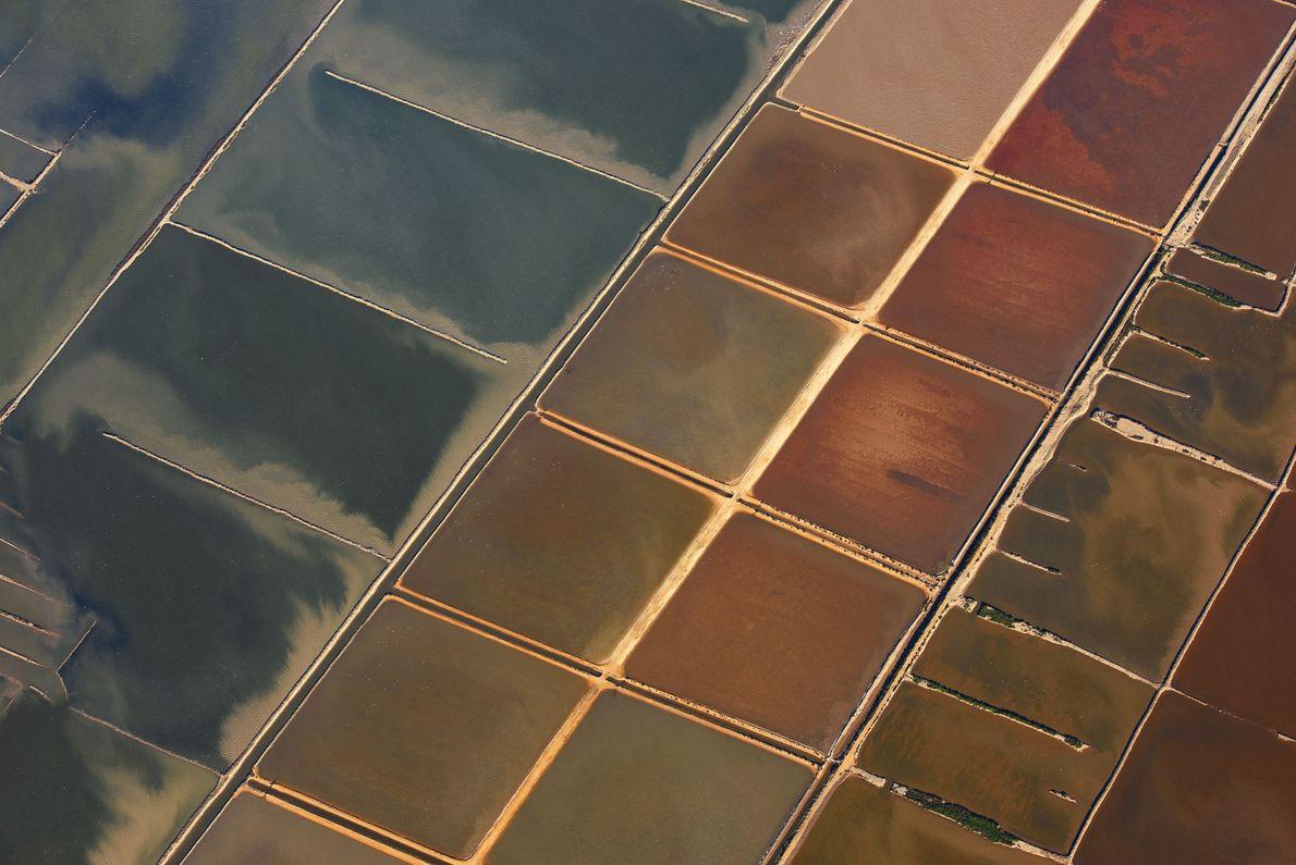 Salt Shapes