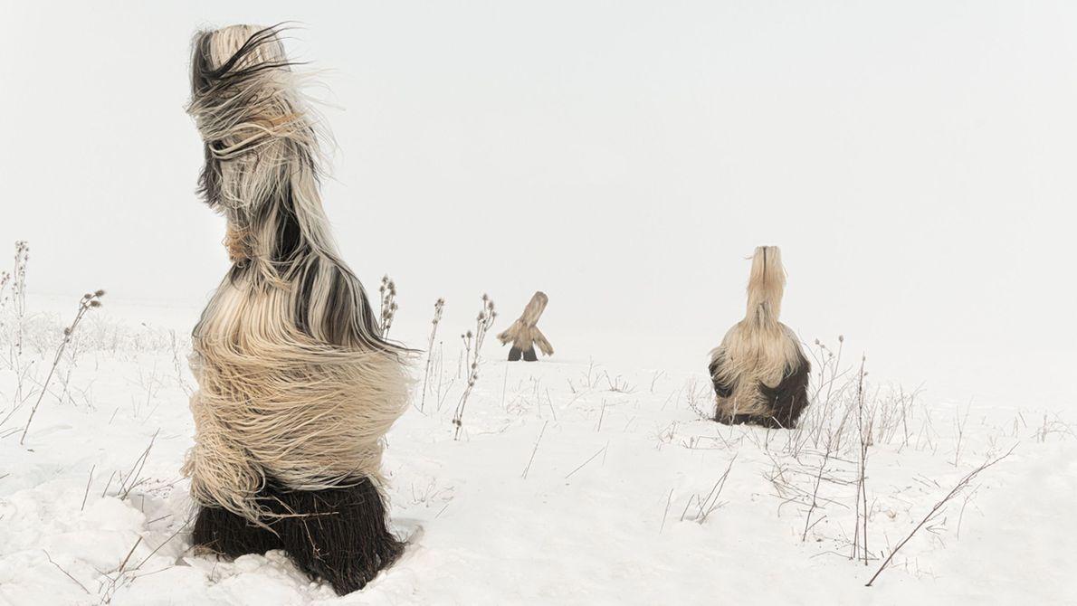Kukeri in Winter
