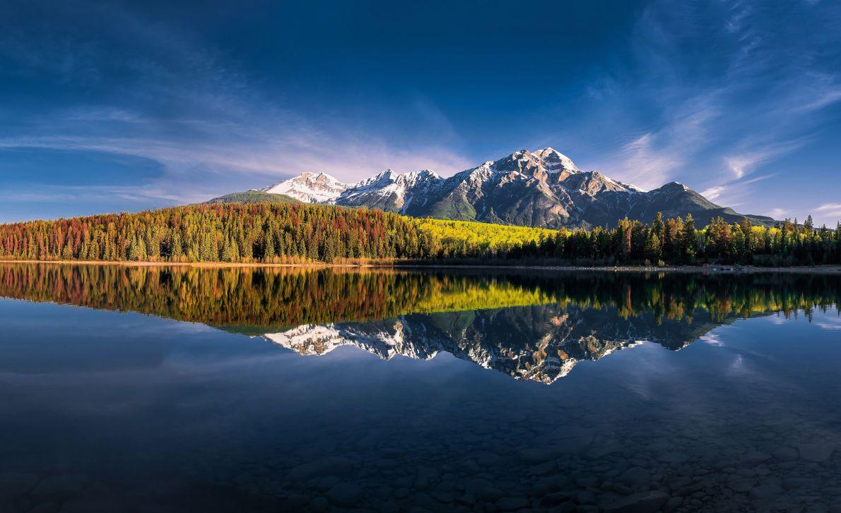 Natural Reflection
