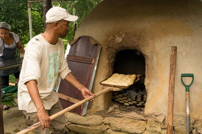 Creations are placed into the oven, speedily, tray by tray, on a wooden paddle, and the ...