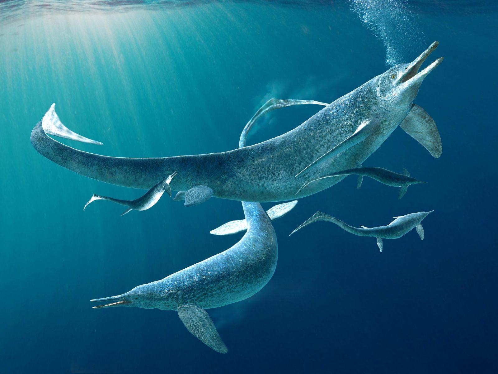 fabio_manucci_triassic_ichthyosaur.jpg?w=1600&h=1200