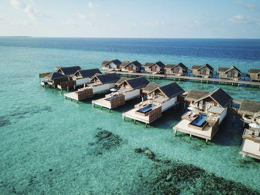 What to explore underwater from the island resort of Fairmont Maldives Sirru Fen Fushi