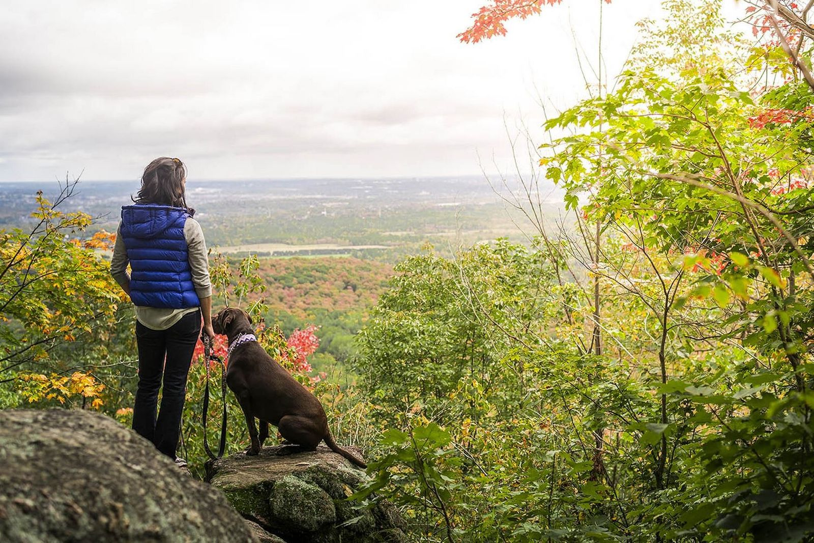 Gatineau Park is just 15 minutes from Parliament Hill in Ottawa where you can enjoy great ...