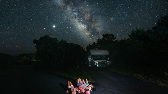 Stargazing Family - Dog Days