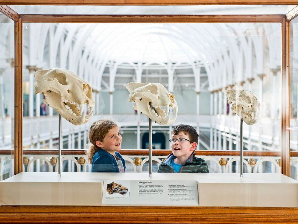Top 10 UK museums for families for October half term