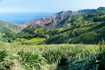 The remote, volcanic South Atlantic island of St Helena, part of the British Overseas Territory also encompassing ...