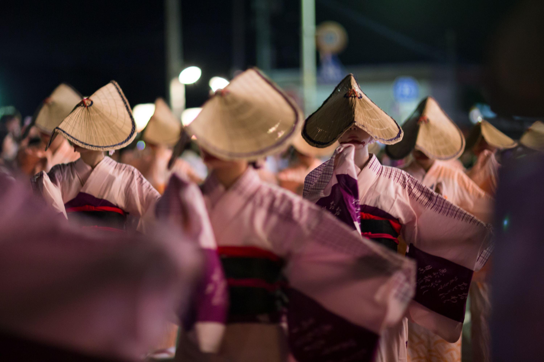 Festival Night