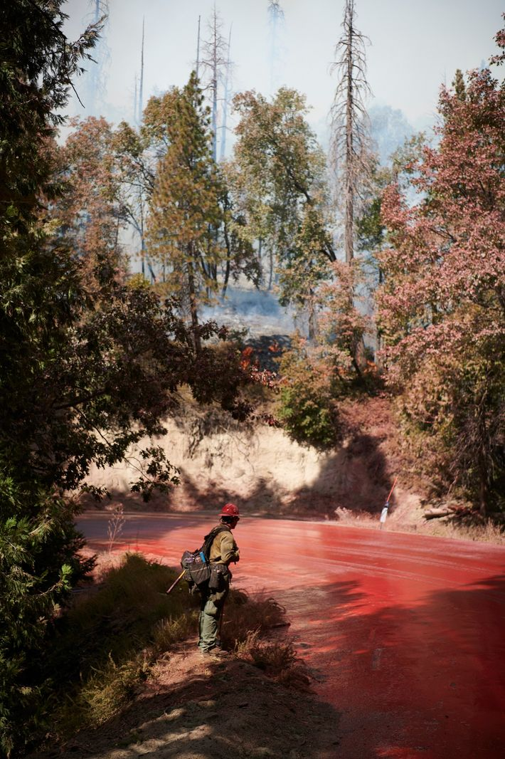 A firefighter stands off of CA Highway 190 in the Sequoia National Forest in September. The ...