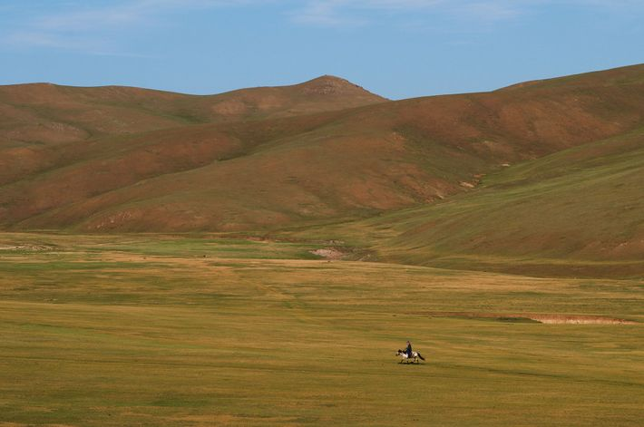 "Roughly translated to ""holy king,"" Bogd Khan Mountain and its surroundings are sacred grounds for many ..."