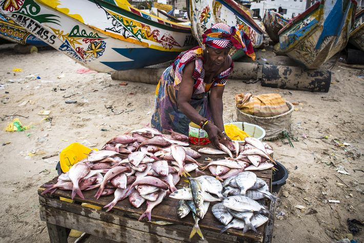 A woman sells fish in the afternoon fish market in Soumbédioune beach when the canoes arrive ...