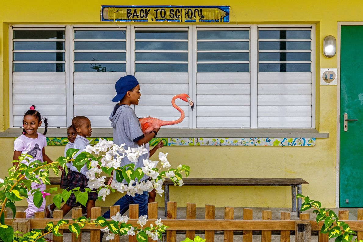 Children follow Bob after he and Doest have had a swim. Curaçao is a popular tourism ...