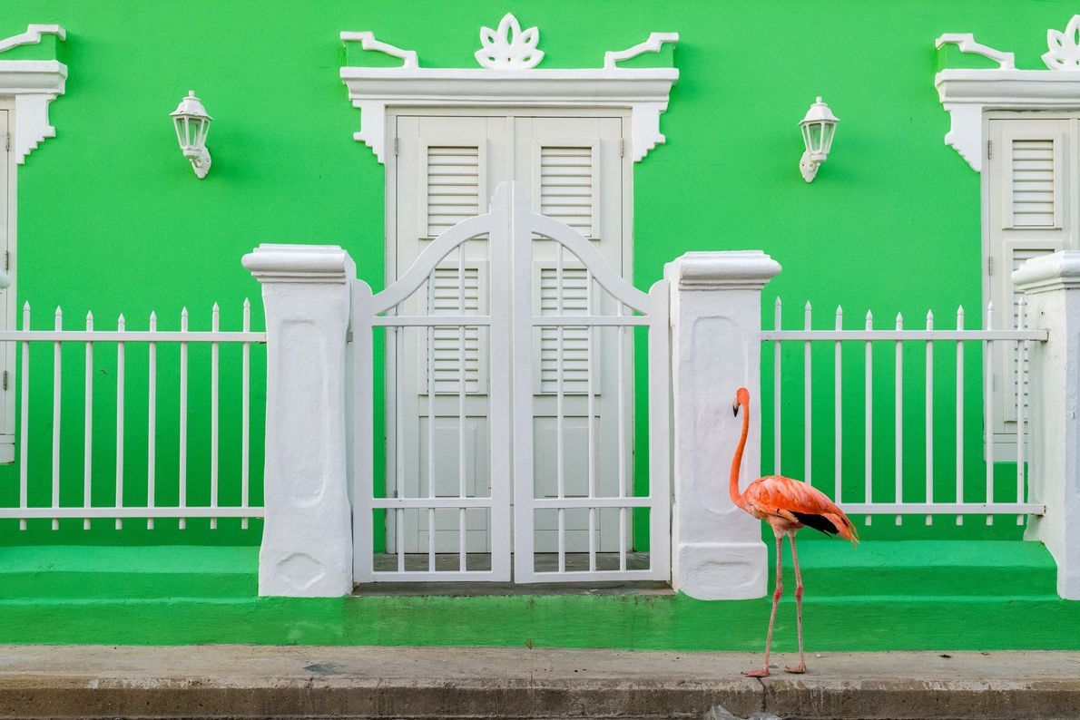 Bob pauses on a walk through a historic quarter of Willemstad. He and Doest travel all ...