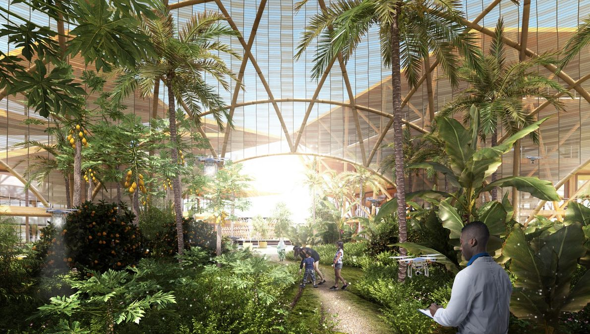 In this concept, residents would grow their own food in daylit farms.