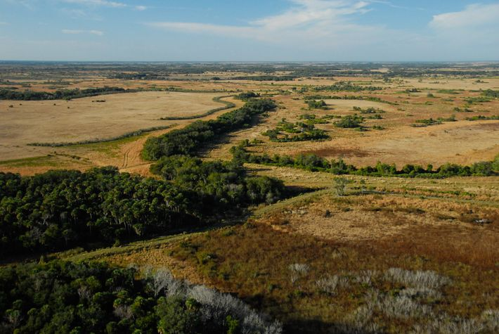 The family of Subway co-founder Fred DeLuca donated 27,000 acres of undeveloped near Yeehaw Junction, in ...