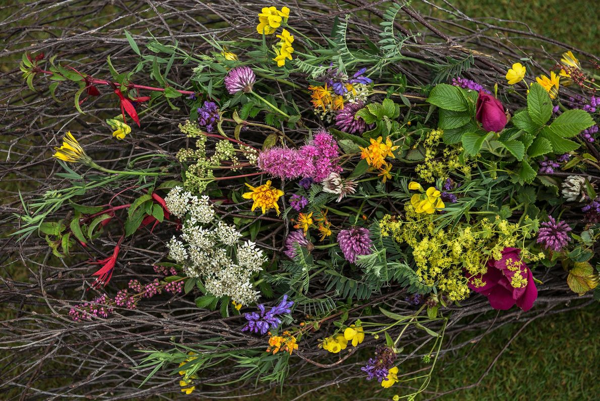 Flowers from a pagan wedding held at the Ring of Brodgar. The couple came to Orkney ...