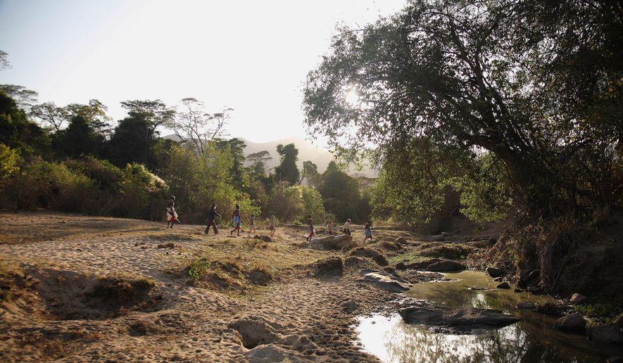 Local Samburu guides lead travelers through a forest in northern Kenya.