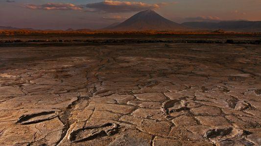 Treasure Trove of Fossil Human Footprints Is Vanishing