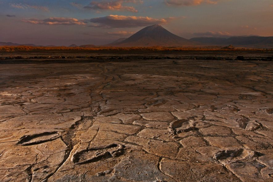 Treasure Trove of Fossil Human Footprints Is Vanishing