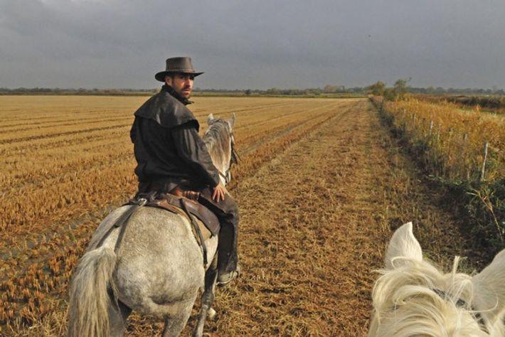Horse-riding at Manade Jacques Bon