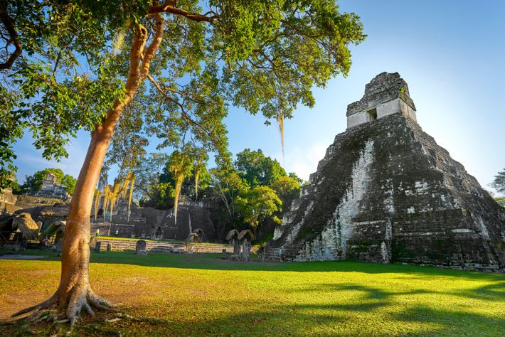 The Temple of the Great Jaguar at Tikal, Guatemala. The pyramids of this UNESCO-recognised site are ...
