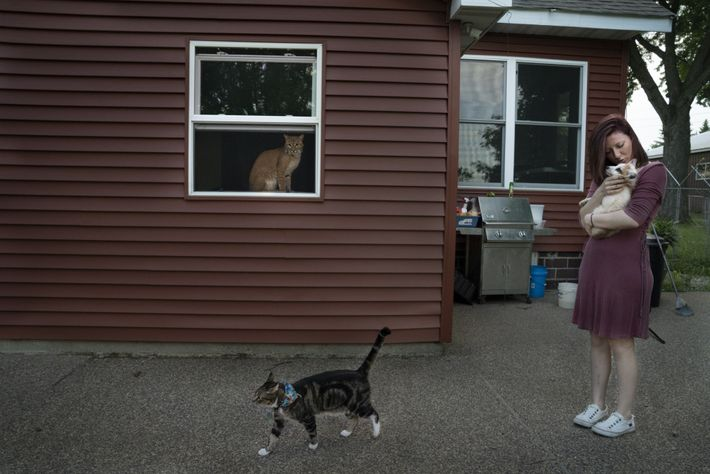 Save A Fox volunteer Kellie Kruse holds a fox named Artemis as Schitzy the cat walks ...