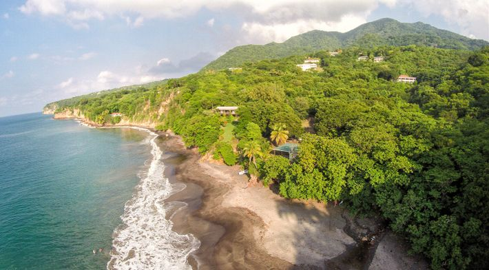 The black sand of Woodlands Bay Beach attracts both sunseekers and turtles.