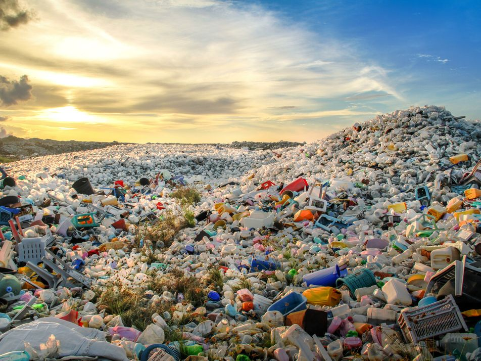 A 'self-destructing' plastic has helped define a new British Standard for biodegradability. Here's what that means. ...