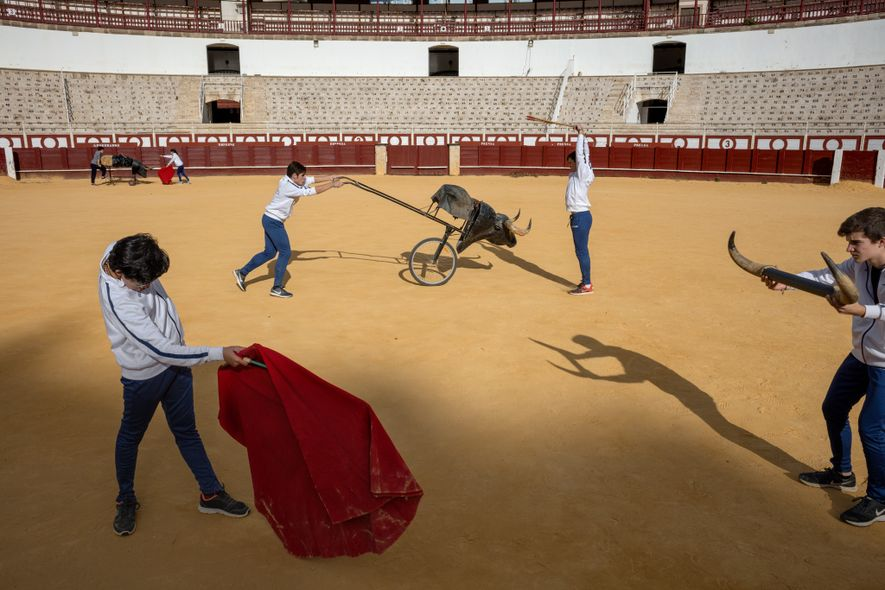 Picasso's love of bullfighting stemmed from childhood visits to the Plaza de Toros de la Malagueta in Málaga, Spain, where young people train and fight today. Picadors and bulls are a recurring motif in his work, as is the half-man, half-bull Minotaur.