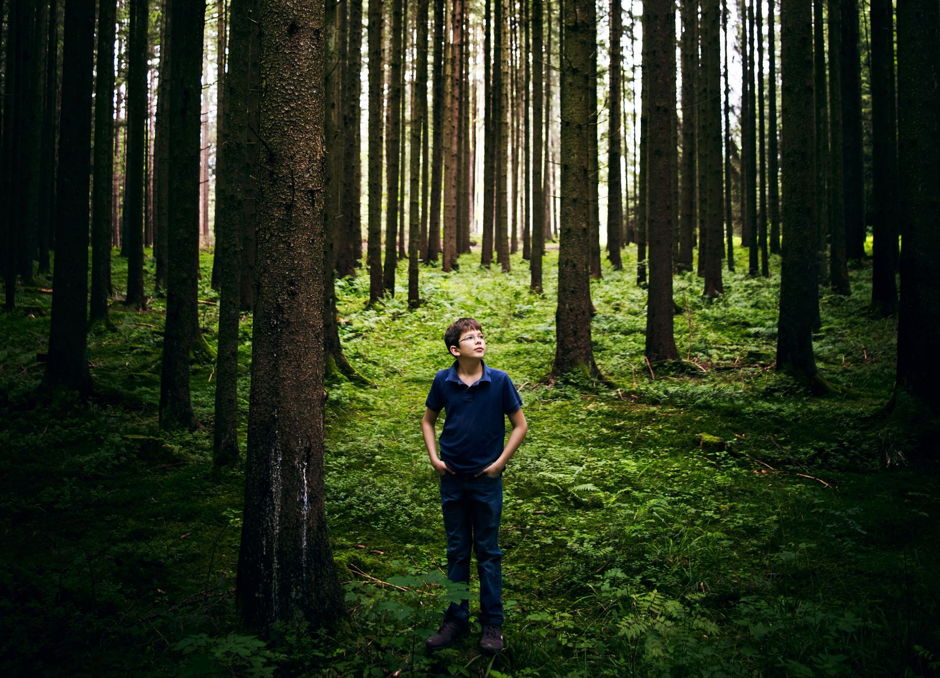 Seen in August 2011, Felix Finkbeiner has made it his life's goal to plant trees. And ...