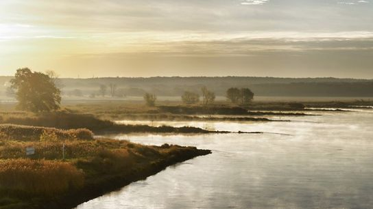 River Oder at sunrise