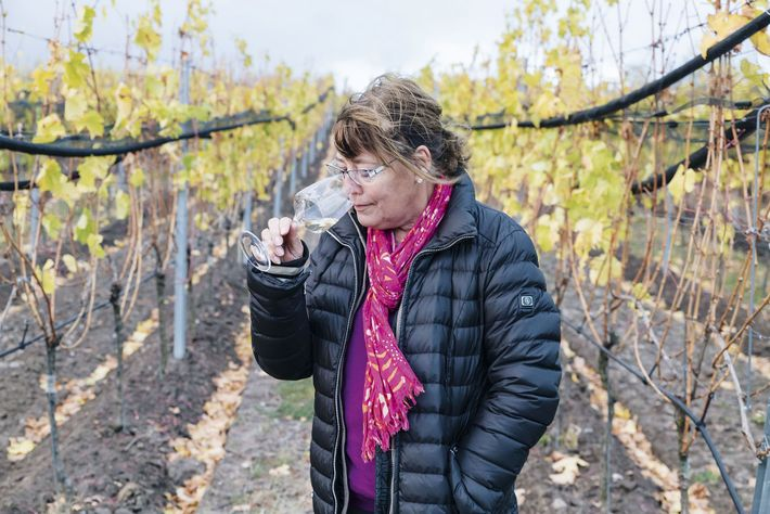 Bettina Muthmann, owner of the Wolkenberg vineyard