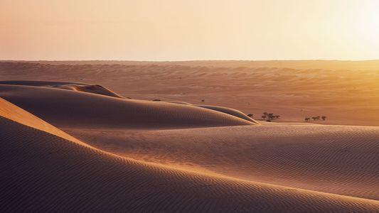 Ridges, ripples and vast swathes of sand: how to discover Oman's deserts