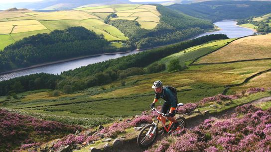 Fuelled by lockdown fatigue and a desire to explore the great outdoors, cycling is more popular ...
