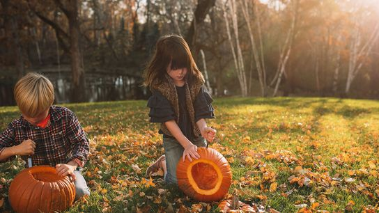From touring corners of haunted castles to joining a pumpkin-carving festival, there are a number of ...