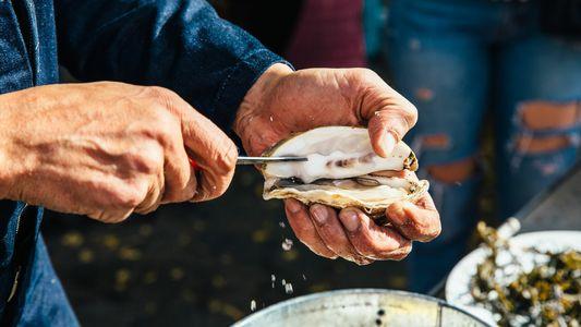 Meet the maker: the oyster king of Denmark