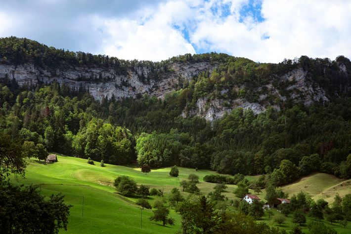 Drive for 45-minutes from Basel and you'll reach the thickly forested mountains, gorges and meadows of ...