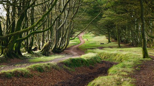 Alastair Humphreys on finding great escapes in the UK