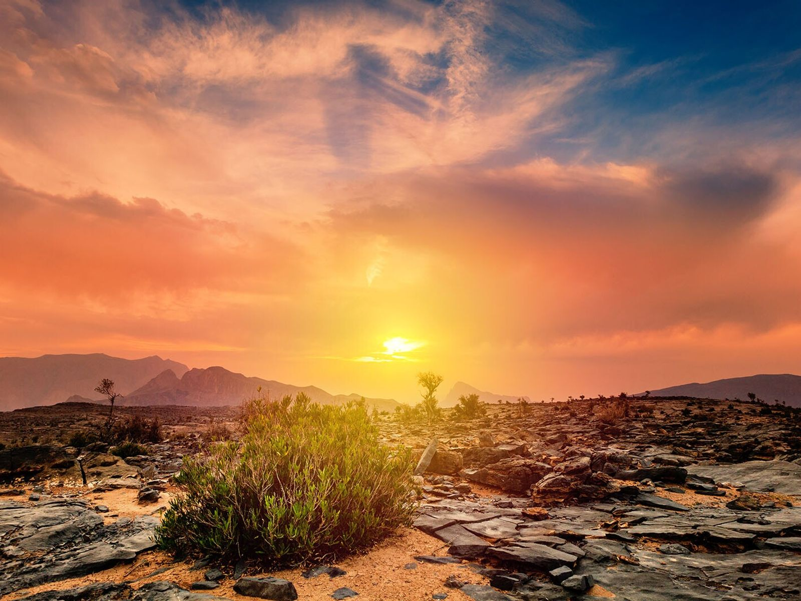 Oman's spectacular landscapes range from vast mountain ranges to rippling swathes of sand.