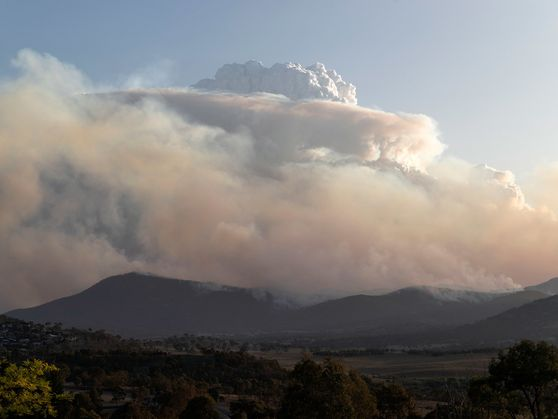 Fire clouds and fire tornadoes: How wildfires spawn extreme weather