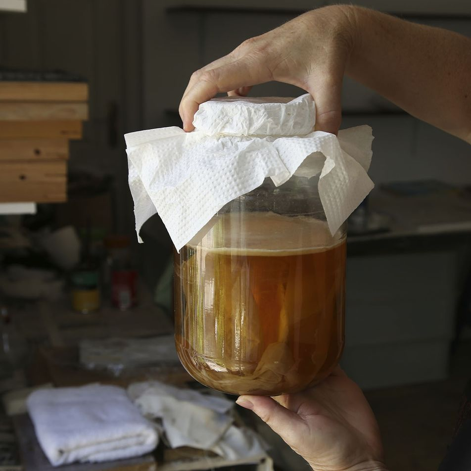 Kombucha: how to make the popular fermented brew that everyone's still talking about