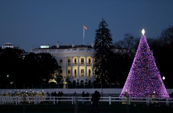 The National Christmas Tree is lit on the Ellipse south of the White House in Washington, ...